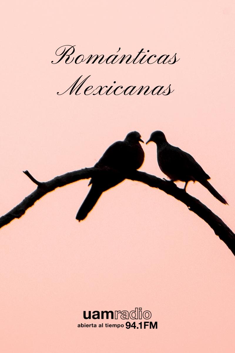 Bloques. CONTENIDO. Series históricas. Románticas mexicanas