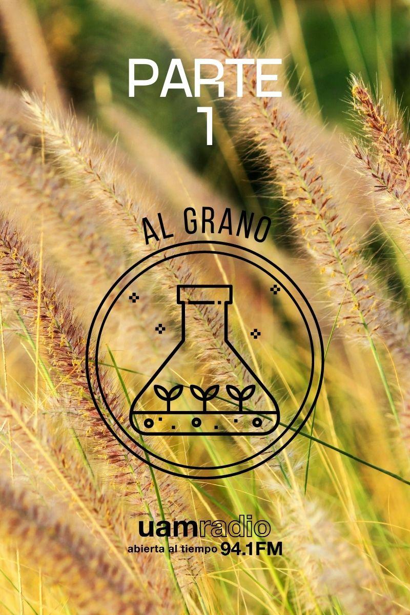 UAM Radio 94.1 FM Al Grano Parte 1