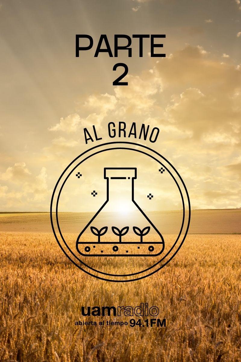 UAM Radio 94.1 FM Al Grano Parte 2